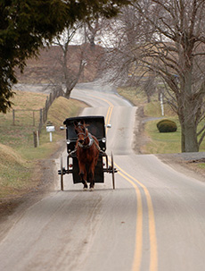 Located in the heart of Ohio's Amish Country.